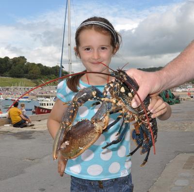 Lobster at Lyme Regis