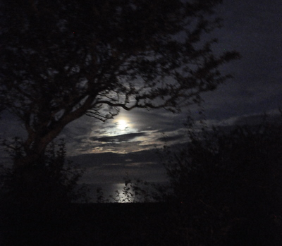 Moonlight from Slapton Sands